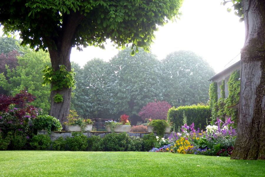 le jardin fleuri de l'hôtel la Tonnellerie de Tavers avec son marronier centenaire