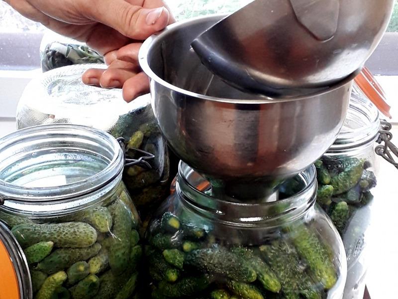 Mise en pots de cornichons au vinaigre à l'hotel ecolabel la Tonnellerie près de Chambord