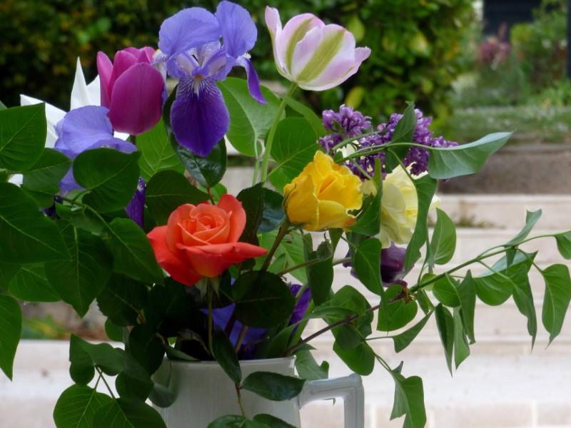 Bouquet de fleurs du jardin de hotel la Tonnellerie situé près du CHateau de Chambord