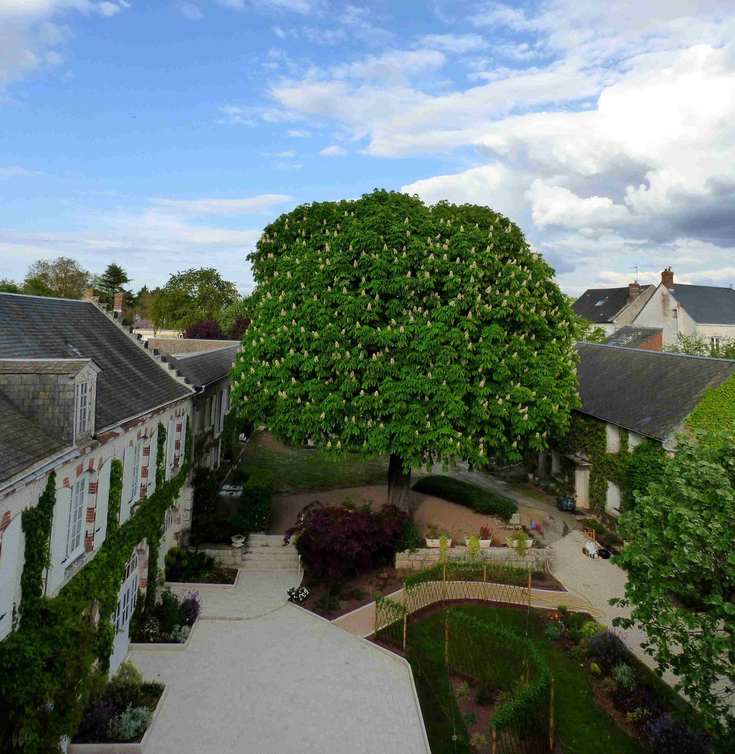 Terrasse du gite hotel la tonnellerie entre Orléans et Blois