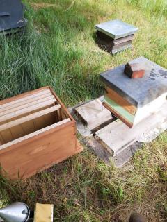 Nouvel maison pour les abeilles de l'hotel la Tonnellerie